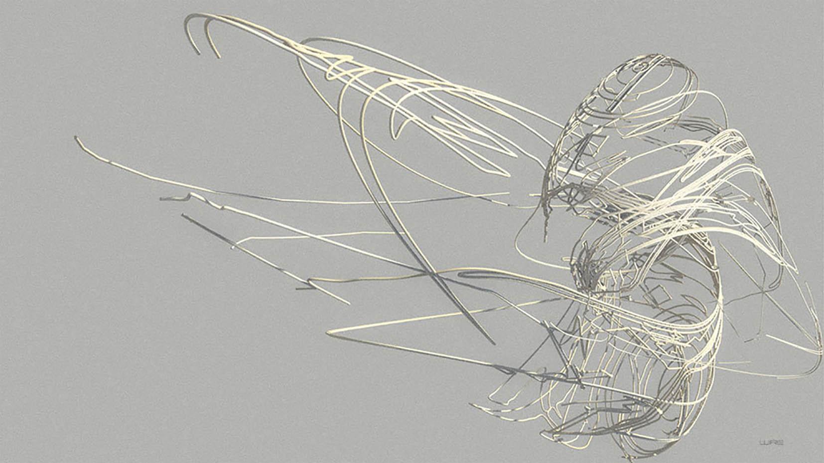 wire complex